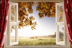הסרת חלודה ממסגרות חלונות